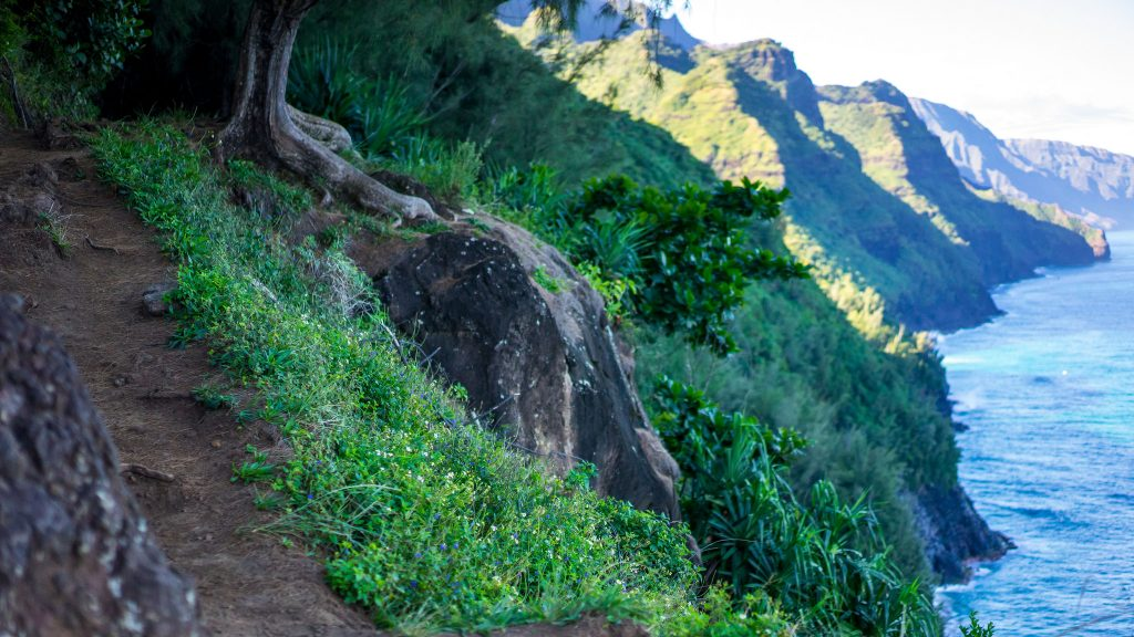 trail places hike kalalau near hikes epic squatch states dylan cc flickr noodles beef commons creative