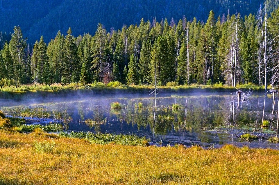 best fly fishing usa montana